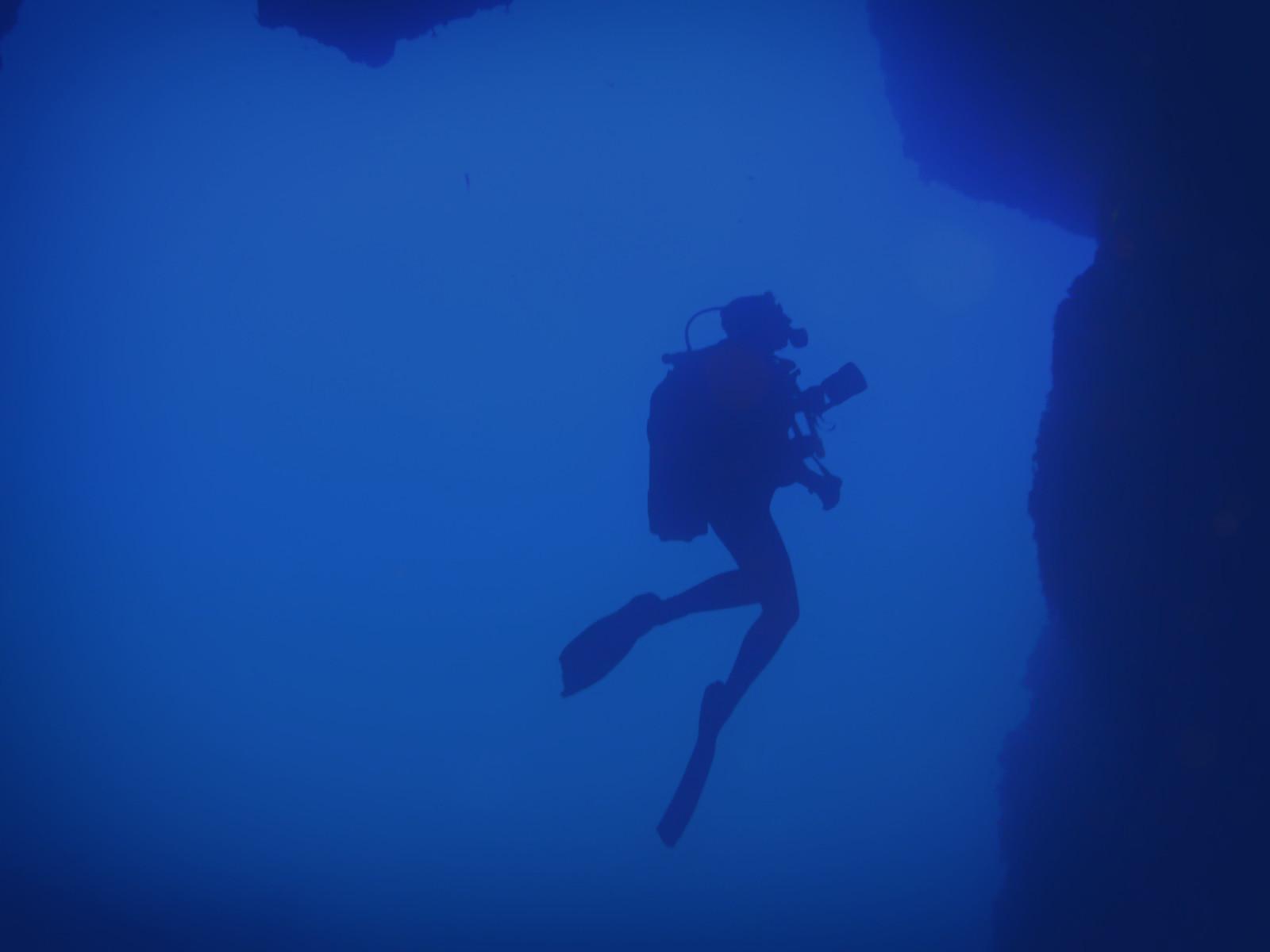 Lustrica diving center chi siamo - Dive per sempre ...